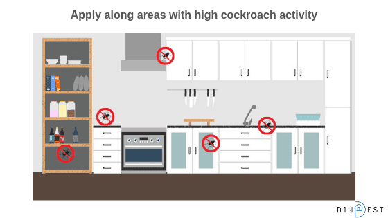 cockroach indication in kitchen area